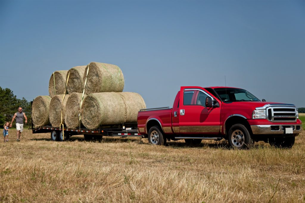 Hay bales stacked on a trailer, tied down, and are ready to be hauled away. Father and daughter can be seen walking around from behind the trailer, but focus is not on them.